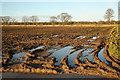 SK8772 : Waterlogged farmland by Richard Croft