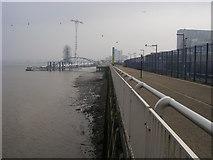 TQ3980 : Thames Path by Shaun Ferguson