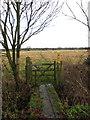 SP9929 : Footpath to Toddington by Philip Jeffrey
