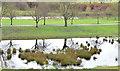J3269 : Flooding, Clement Wilson Park, Belfast by Albert Bridge
