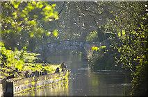 N9732 : The Stone Bridge by MBE21