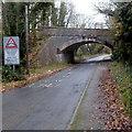 ST1768 : South side of a disused railway bridge near Cosmeston by Jaggery