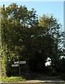 ST7994 : Direction signpost near Kingscote by nick macneill