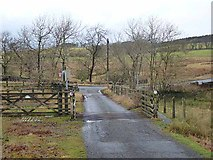 NY9179 : Cattle grid near the Tone Inn by Oliver Dixon