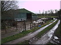 SU1087 : Charolais cattle, Fox Mill Farm, Purton by Vieve Forward