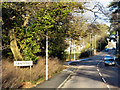 SY9288 : A351, Sandford by David Dixon