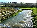 SU1972 : River Og, Ogbourne St Andrew, near Marlborough 01.01.2013 by Brian Robert Marshall
