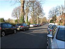 TQ3005 : Preston Park Avenue Brighton by Dave Spicer