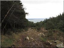 J3629 : The Glen River Track below the mountain gate by Eric Jones