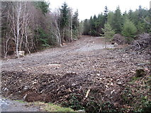J3630 : HEP pipeline clearing in Donard Forest by Eric Jones