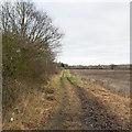 SP3174 : Track towards Wainbody Wood Farm by David P Howard