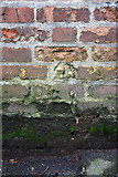 SP5007 : Benchmark on Leckford Road wall by Roger Templeman