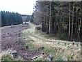 NY7973 : Pennine Way near Goften Burn by Oliver Dixon