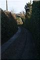 SX5049 : Gabber Lane, Down Thomas by Kate Jewell