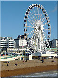 TQ3103 : The Brighton Wheel by Roger  Kidd