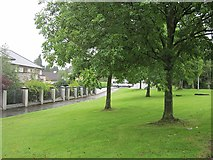 N0442 : Ballymahon Road by Richard Webb