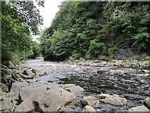 NY8828 : River Tees by Chris McAuley