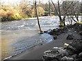 SO1091 : Rough water under Dolerw footbridge by Penny Mayes