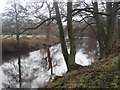 SK2566 : River Derwent north of Rowsley by Andrew Hill