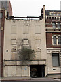 TQ3180 : Derelict building with tree by Stephen Craven