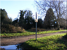 TL1116 : Footpath to Shepherds Way by Adrian Cable