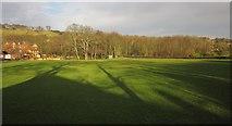 NZ8607 : Cricket ground, Sleights by Derek Harper