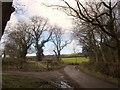 NZ8306 : Esk Valley Walk at Old Park Lane by Derek Harper