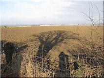 SE7772 : January shadows by Pauline E