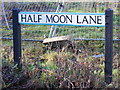 TL0818 : Half Moon Lane sign by Adrian Cable