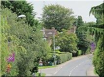 TQ5130 : Crowborough Hill, TN6 by Mike Quinn