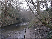 TQ2170 : Beverley Brook, Wimbledon Common by David Anstiss