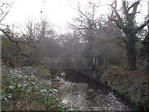 TQ2170 : Footbridge over Beverley Brook, Wimbledon Common by David Anstiss