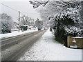 SU2913 : A31 snowy morning by Val Pollard
