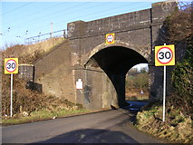 TL1217 : Thrales End Lane Railway Bridge by Adrian Cable