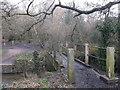 TQ2170 : Footbridge over Beverley Brook,  near Wimbledon Common by David Anstiss