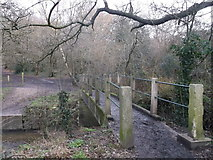 TQ2170 : Footbridge over Beverley Brook,  near Wimbledon Common by David Anstiss