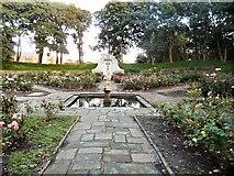 SD3129 : Sunken rose garden by Gerald England