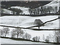 SD4392 : Snowy fields by the River Gilpin by Karl and Ali