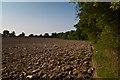 TQ3447 : Field edge by Ian Capper