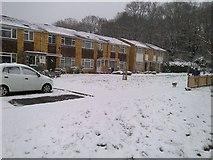 TQ1562 : Foxwarren, Claygate by Claygate Surrey