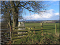 NU0105 : Field corner with nearby trig point by Trevor Littlewood