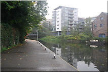 TQ3783 : Capital Ring by the River Lea by N Chadwick
