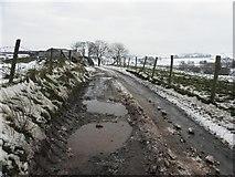 H5664 : Rough lane, Radergan by Kenneth  Allen