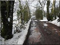 H5664 : Mucky lane, Radergan by Kenneth  Allen