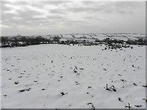 H5664 : Snow, Radergan by Kenneth  Allen
