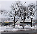 ST2995 : Morrisons through the trees, Cwmbran by Jaggery
