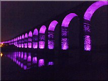 NT9953 : Border Bridge illuminated 6 by Barbara Carr