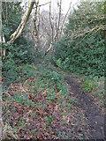 SE1307 : Footpath, near Hinchliffe Mill, Holmfirth by Samantha Waddington