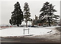 ST2991 : Snowy roundabout, trees and Malpas Court, Oliphant Circle, Newport by Jaggery