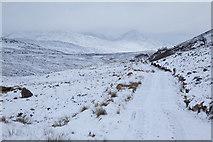 NN3468 : Path between Loch Ossian and Loch Treig by Doug Lee